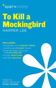 Essay for to kill a mockingbird